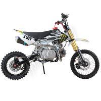 Pitbike MiniRocket Motors CRF50 14/12 125ccm Monster Automat