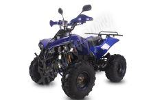 Dětská elektro čtyřkolka ATV Warrior XL 1000W  48V modrá