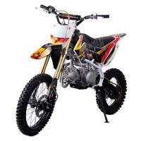 Pitbike MiniRocket Motors CRF110 125ccm 14/12