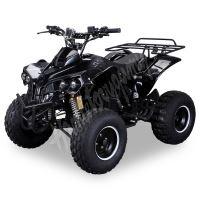 """Dětská čtyřtaktní čtyřkolka ATV Warrior XXL 125ccm černá 3 rych. poloautomat 8"""" kol"""