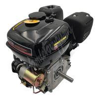 Kompletní motor pro Buggy Cheetah4Kids 208cc